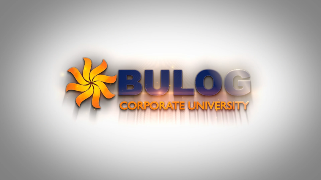 Bulog Video Company Profile
